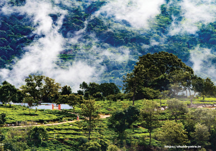 Ooty: The Blue Mountain Paradise